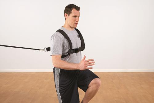 Pro Padded Harness