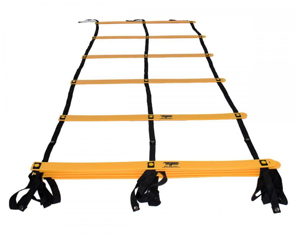 Double Ladder